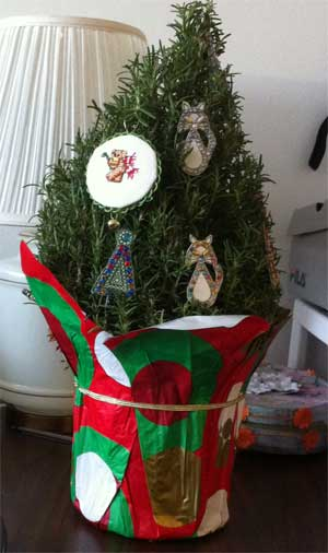 potted rosemary tree decorated for xmas