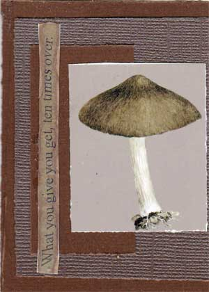 Artist trading card in brown colors with picture of mushroom